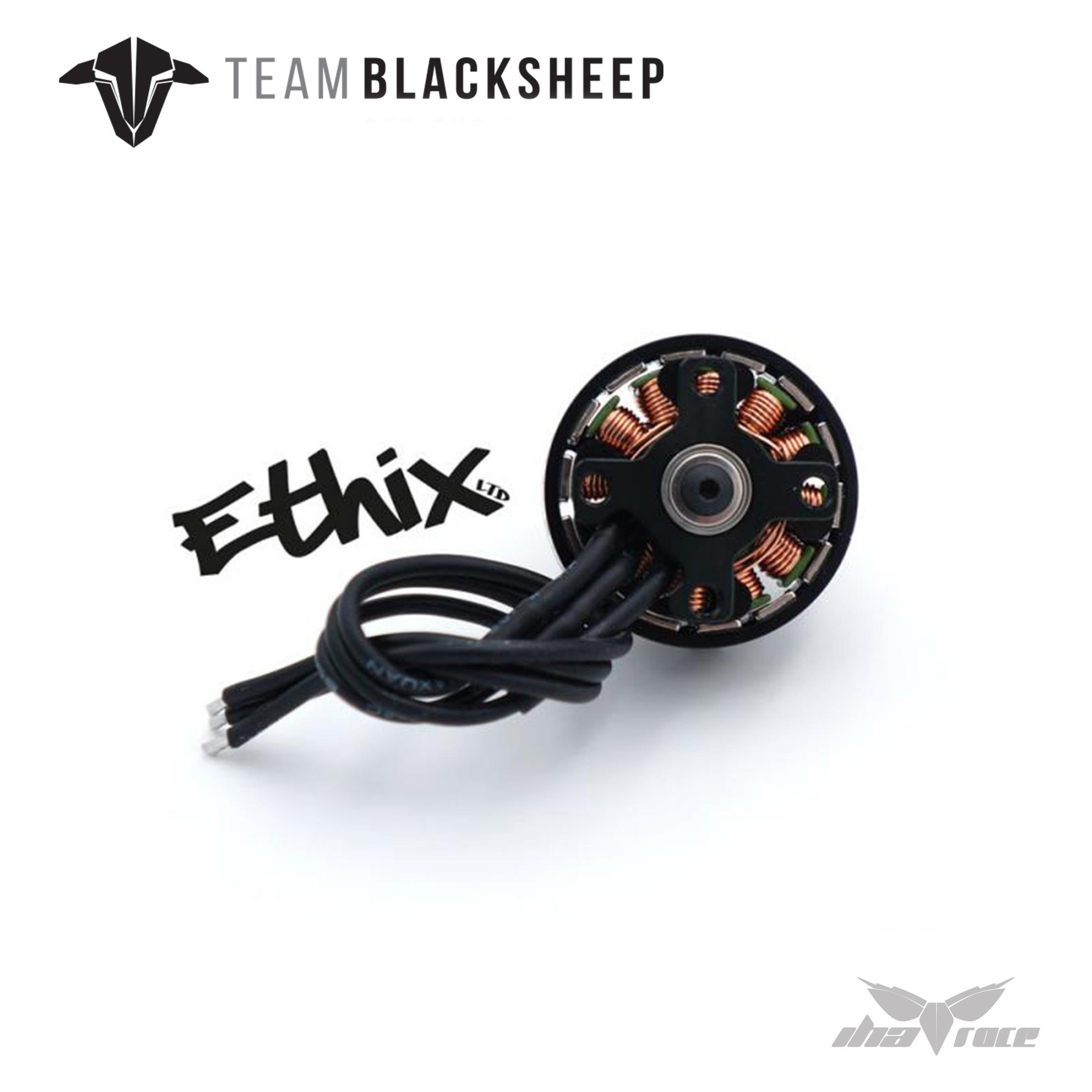 Motor TBS ETHIX Mr. Steel STOUT V2